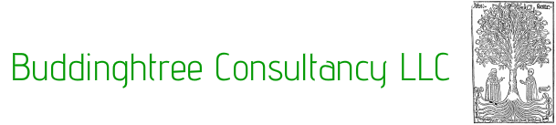 BuddinghTree Consultancy llc